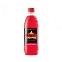 INKOSPOR Amino+Protein Drink 12x500ml Flasche, div. Aromen